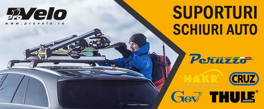 Suporti auto schiuri si snowboard