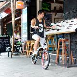 Bicicleta Pliabila DAHON VIGOR D9S 115957